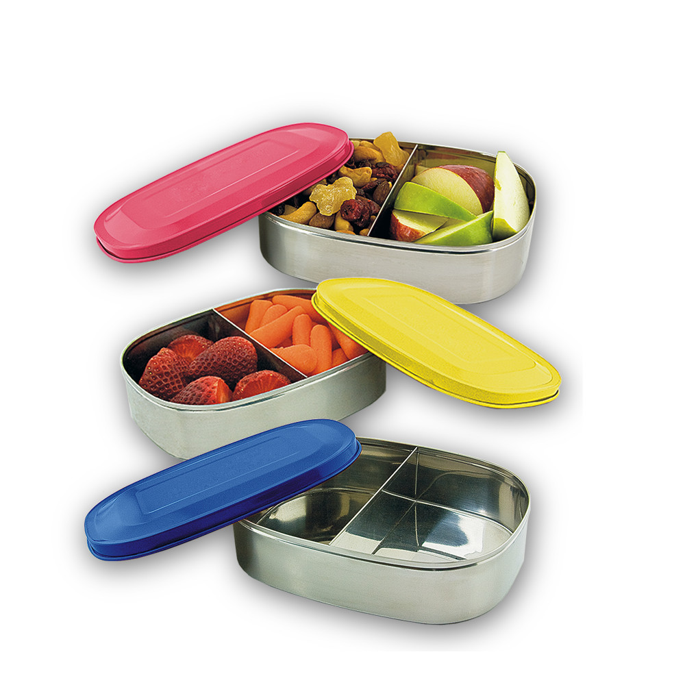 Stainless Steel Food Container W/Tinted Lids